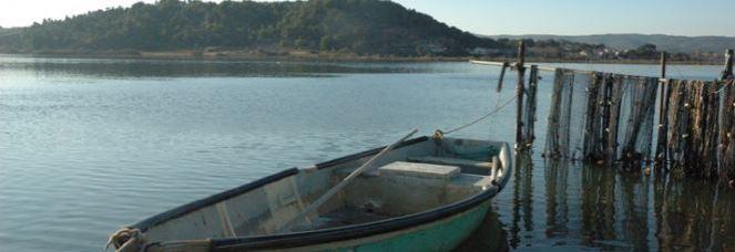 SEANEO, conseils en environnement littoral et en océanographie, propose du conseil et des services e...
