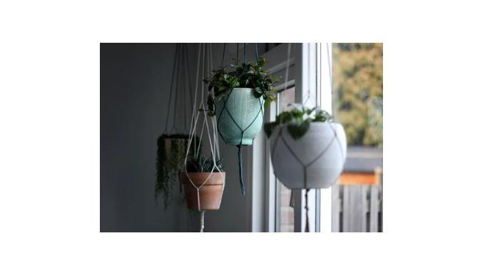 Эффектное украшение дома и сада – подвесные горшки с цветами