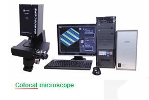 Confocal Laser Microscope
