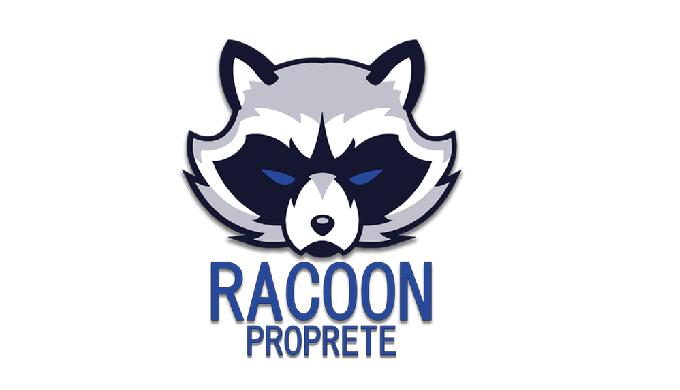 Racoon Propreté - Nettoyage bureaux, commerces, locaux sportifs, copropriété. Hygiène et désinfectio...