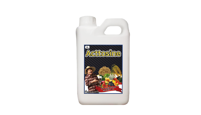 Acttosine 3L | Fertilizer