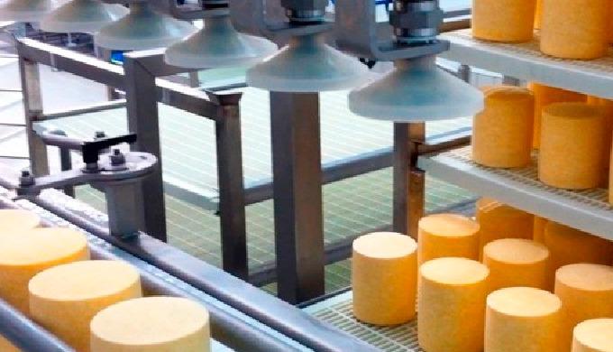 Автоматическая загрузка сыров на полки
