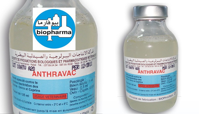 ANTHRAVAC - Vaccin