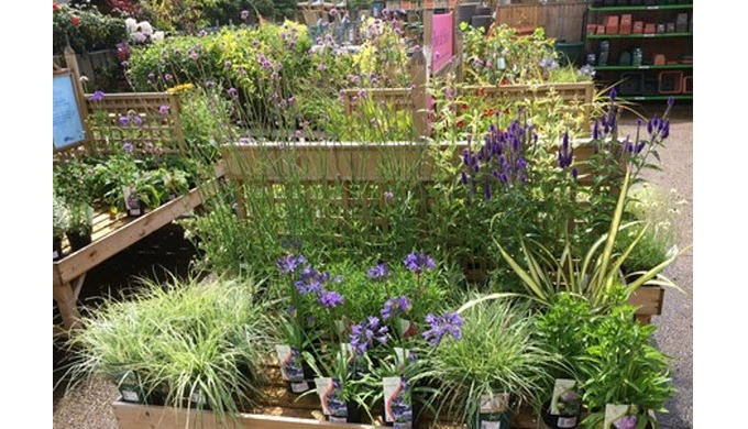 Hillier Garden Centre Newbury, to the north of the Berkshire town and near the village of Hermitage,...