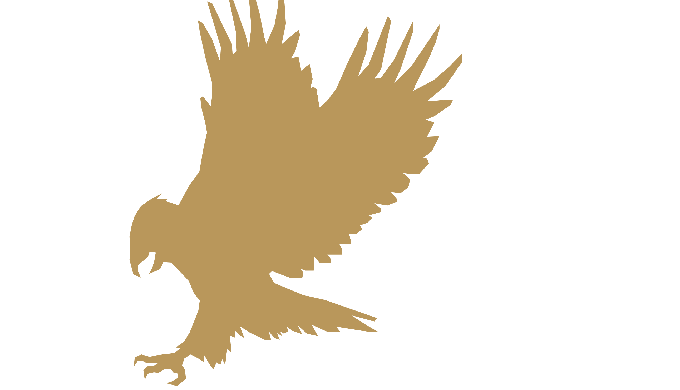Swiss Eagles was established by financial professionals and software developers that have been opera...