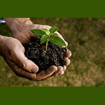 Responsabilités environnementales La préservation de l'environnement et le développement durable rep...