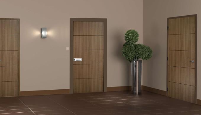 Portes palières EI30 et acoustiques ferrées : • Porte EI30 âme pleine composite avec cadre bois exot...