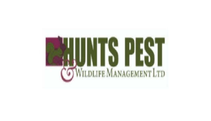 Huntspest is the leading Pest Control in Peterborough, Sawtry, Kimbolton, Huntingdon & Royston. We o...