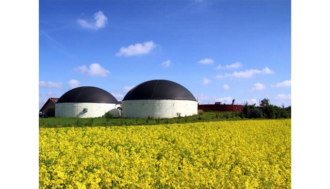 Erdgas/Biogas