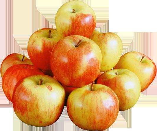 تفاح مصرى جودة ممتازة مواصفات تصدير التعبئة والتغليف حسب الطلب