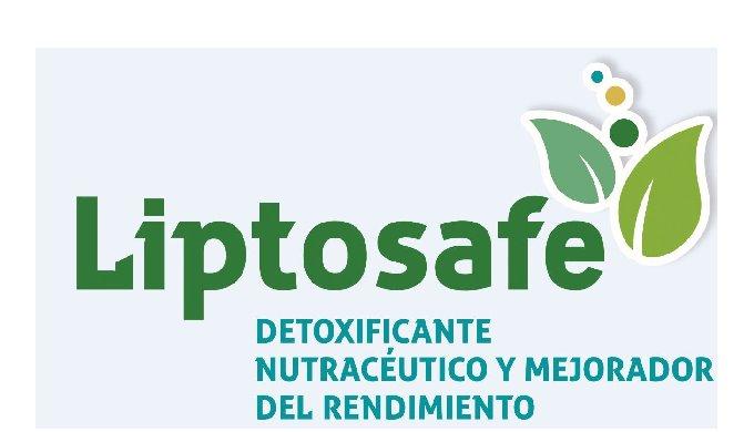 Solución integral a los daños en los principales órganos y funciones metabólicas producidos por mico...