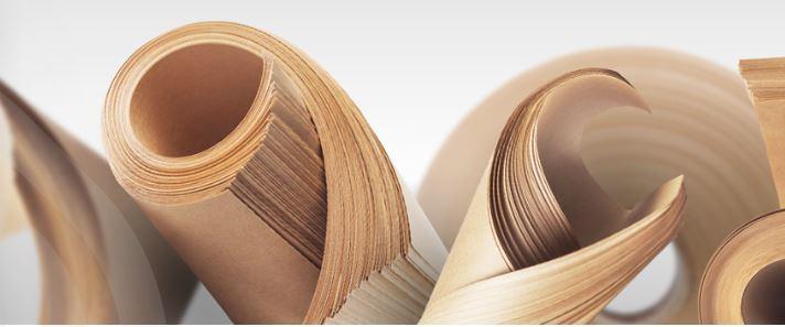 Avec SEGEZHA Group, le quatrième fabricant mondial de papier pour sacs non blanchi, vous êtes entre ...