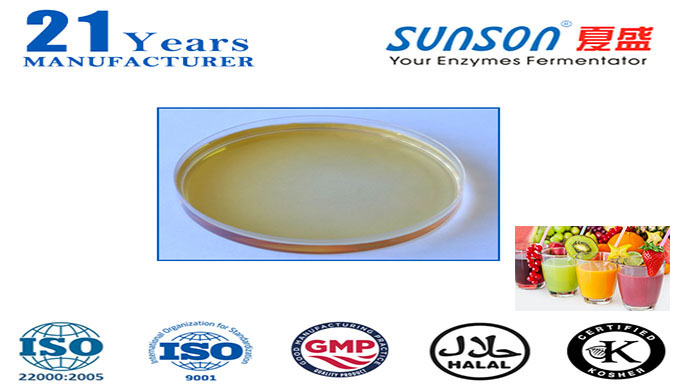 Xylanase for fruit juice Sunson XY20L-