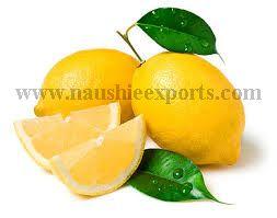 Offer To Sell Fresh Lemon