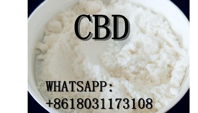 cbd whatsapp:+8618031173108