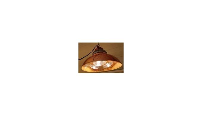 Lamp Protector (JKBL450)