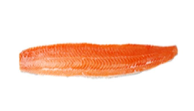 Lachsfilets | hochwertiges Fischfilet