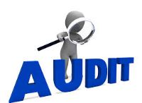 Conseil & Audit