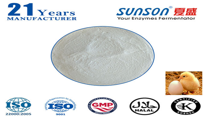 Complex enzyme for animal feed Nutrizyme Sunson-I--professional enzyme manufacturer since 1996