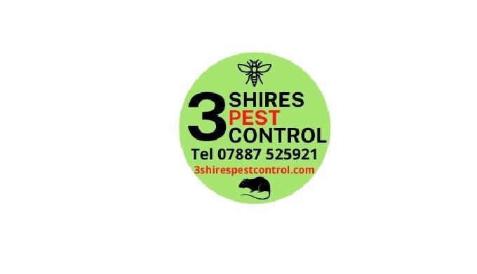 pest control, pest control services, exterminator, pest control mice, pest control rats