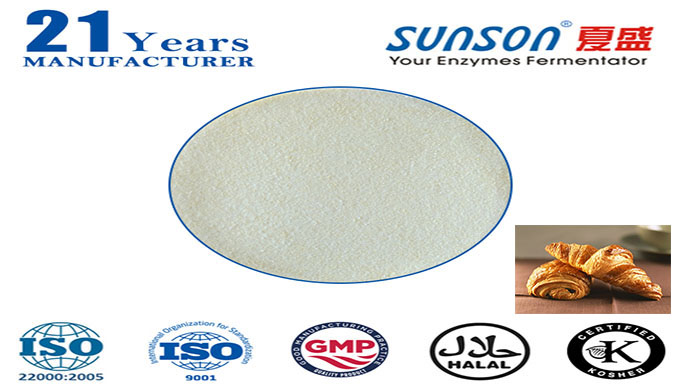 Xylanase enzyme for food additive industry Sunson SBE-01X