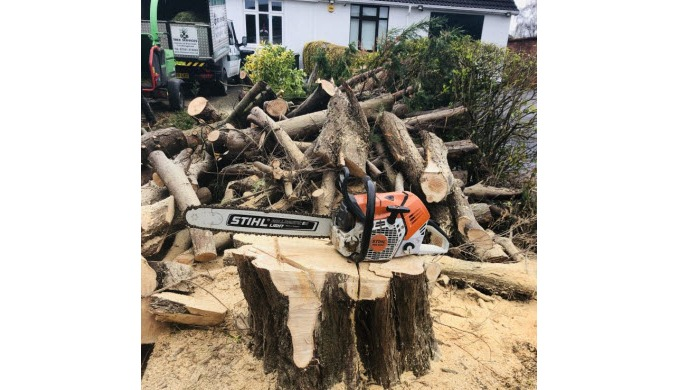 We are a reliable, fully qualified and fully insured team of tree surgeons based in Chepstow. We pro...