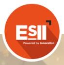 ELECTRONIQ SYSTEM INFORMATIQ INDUSTRIE, ESII (ELECTRONIQ SYSTEM INFORMATIQ INDUSTRIELS)