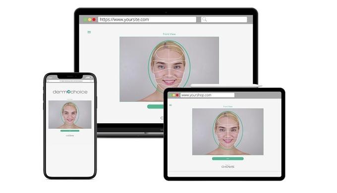 Web based skin analysis
