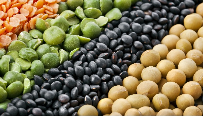 Pulses & Soybeans
