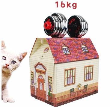 It is strong enough to hold your car safetly in PLAYHOUSE!
