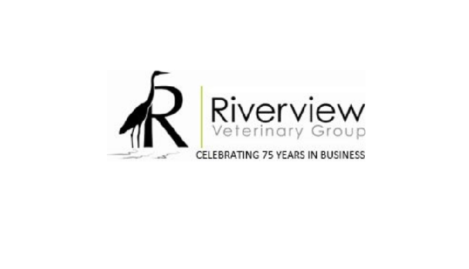 The services of a proficient vet in Carrigaline are just a few clicks away. Our official website is ...