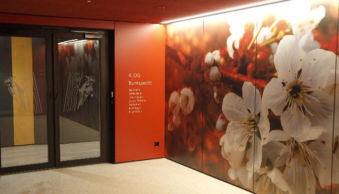 Gestaltung von Besucherführungen, Wegleitungen, Gebäudeanschriften, Piktogrammen und Informationsanl...