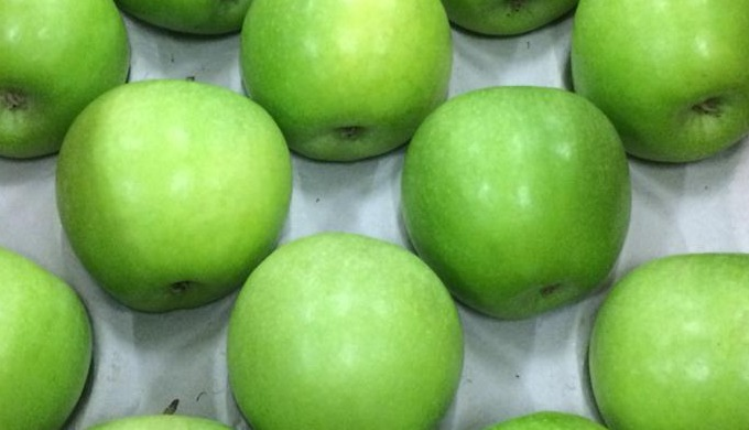 Green apples Granny smith Greek origin Sizes available 100/113/138 Packing in 18kg telescopic carton...