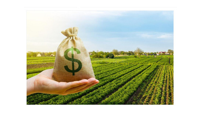 Почему инвестировать в агросектор становится выгодно
