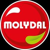 MOLYDAL SA (MOLYDAL S.A.)