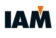 GRUPO IAM: Industria Auxiliar De Matricería