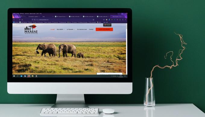 Création de votre site internet : Site Vitrine Site Ecommerce Site Personnalisé Utilisation du CMS W...
