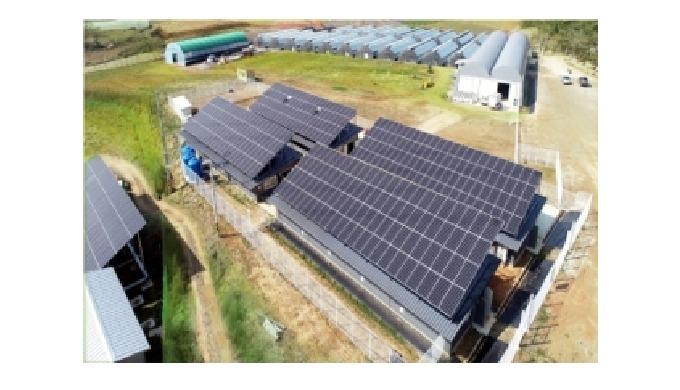 Круговая сельскохозяйственная солнечная энергия / 100 кВт солнечной фермы