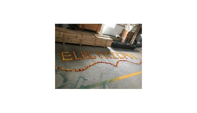 Sixth Anniversary Celebration of the Electricfor Headquarters Opening in Bangalore