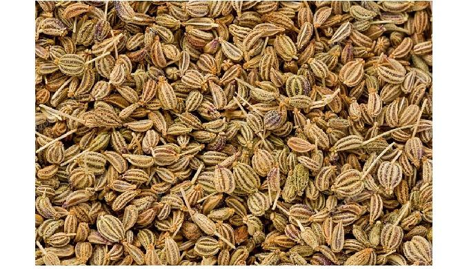 Indian Ajwain Seeds Manufacturer, Indian Ajwain Seeds Exporter, Indian Ajwain Seeds We are a manufac...