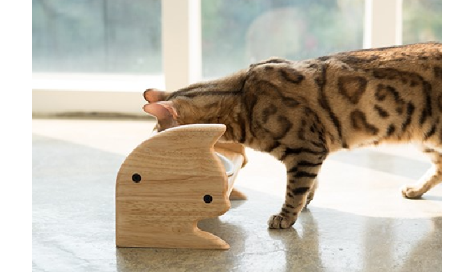 It's made from natural rubberwood, targeted for smaller breeds. The elevated height reduces joint st...