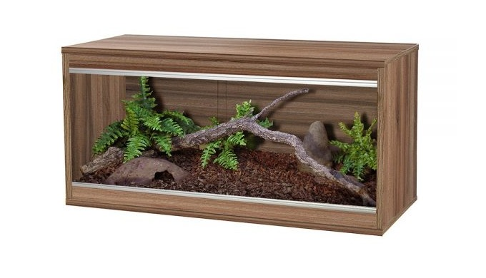 Evolution Reptiles offer top-quality wooden vivariums in the UK that provide a comfortable home for ...