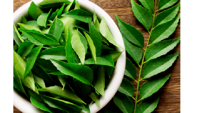Basil Food Offer Best Quality of Fresh & Dried Curry Leaves, Herbal Products, And All Vegetable.