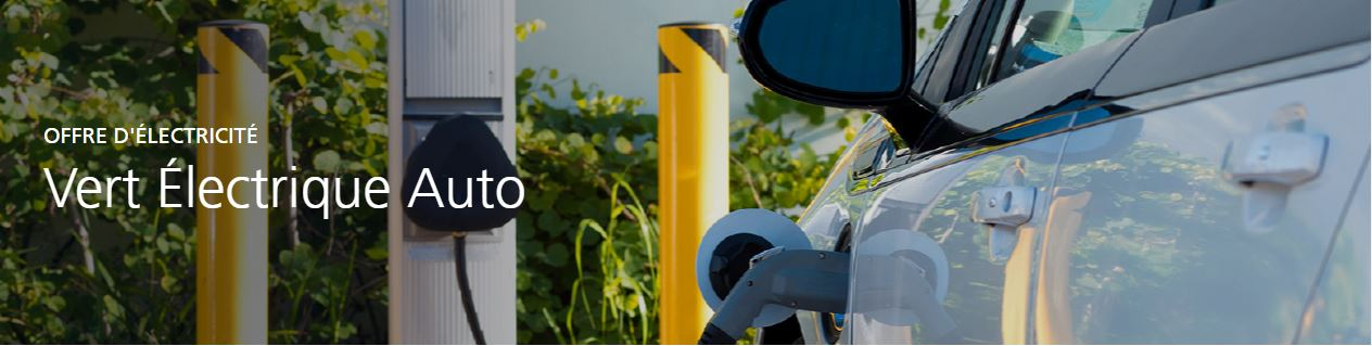Avec EDF Vert Électrique Auto, bénéficiez une électricité verte 50 % moins chère la nuit et en optio...