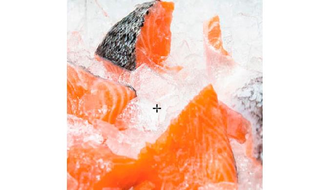Arctic Salar - Bits & Pieces, with skin