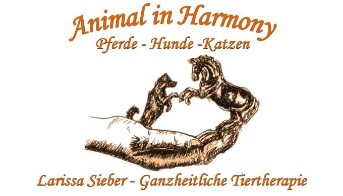 EAVET® Equin-Scanningsystem Energetische Tiertherapie Tierkommunikation Manuelle Therapie (Osteopath...