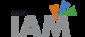 GRUPO IAM: Industria Auxiliar De Matricería, IAM, S.A