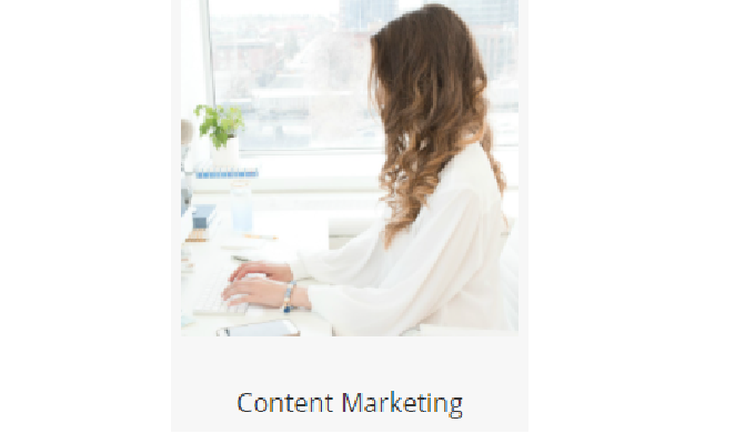 Content Marketing Support Content Marketing is a long-term strategy of providing consistent, high-qu...