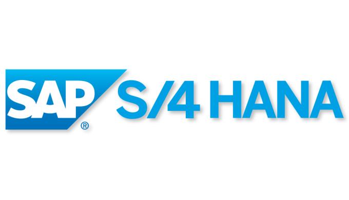 Implementace a rozvoj systému SAP S/4HANA, uživatelská podpora a školení, doplňkový vývoj (ABAP, Fio...
