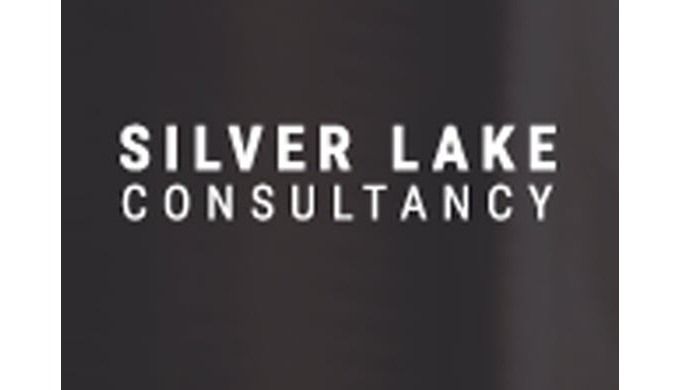 Statistical analysis and consulting has always been at the core of the SilverLakeConsult.com, basica...